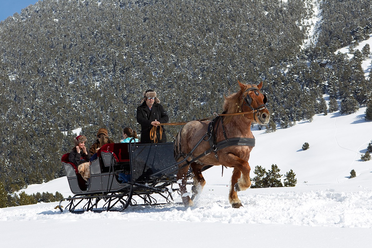 Horse and sleigh on a mountain track