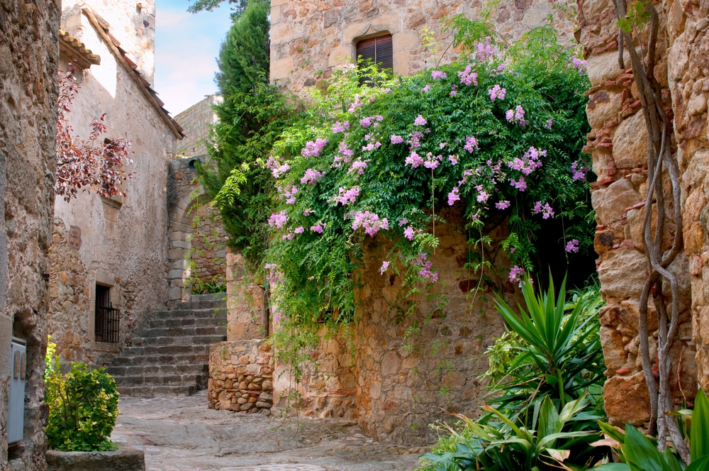 Street with flowering bushes in Peratallada